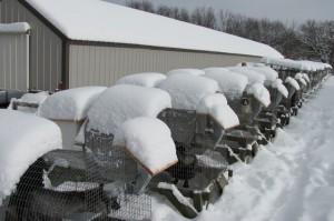 Breeding/whelping pens in a fox yard in the winter